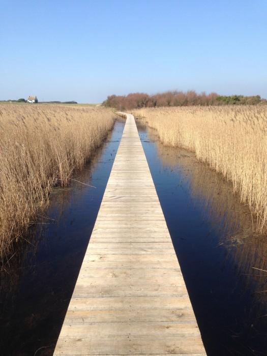 Observatoire ornithologique et passerelle de l'étang de Trunvel